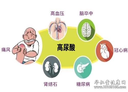 高尿酸并发症